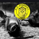 ΑΟ Αυλωναρίου: ΚΑΛΟ ΠΑΡΑΔΕΙΣΟ Χρύσα Γεραμάνη!